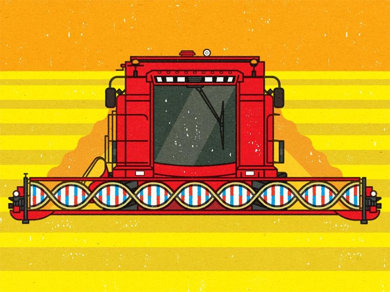 معماری ژنتیک اختلال طیف اوتیسم (۲) : ناهنجاری های کروموزومی
